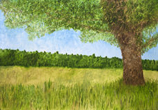 Leafy tree in countryside. Oil painting of leafy green tree in countryside with forest in background Royalty Free Stock Images