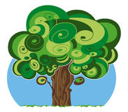 Leafy tree Royalty Free Stock Image