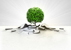 Leafy tree stuck into ground with flare concept Stock Image