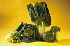 Leafy vegetables against yellow background Royalty Free Stock Image