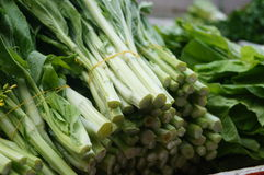 Leafy vegetables Royalty Free Stock Image