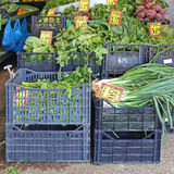 Leafy Vegetables Royalty Free Stock Photography