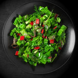 Leafy vegetables salad in plate Royalty Free Stock Images