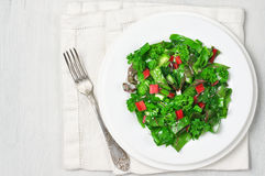 Leafy vegetables salad in plate Royalty Free Stock Photos