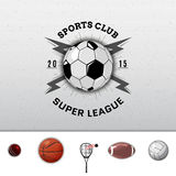 League college insignia  and labels for any use Royalty Free Stock Photos