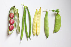 Leagumes beans Stock Images