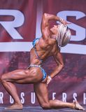 Curvy, Muscled Female Physique Athlete Poses at 2018 Toronto Pro Supershow Stock Image