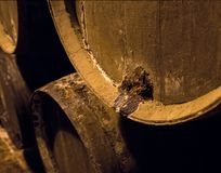 Row of stacked wooden wine barrels for sherry aging. Leakage of sherry from casks or barrels along wall of winery for aging sherry or port Royalty Free Stock Image