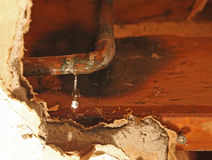 Leaking Pipe. Water leaking out of copper pipe Royalty Free Stock Photo