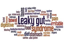 Leaky gut syndrome word cloud concept