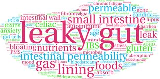 Leaky Gut Word Cloud. On a white background Royalty Free Stock Image