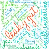 Leaky Gut Word Cloud. On a white background Stock Photo