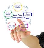 Lean Data Management. Presenting Diagram of Lean Data Management Royalty Free Stock Image