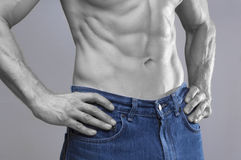 Lean male abs in blue jeans. Closeup of shirtless Caucasian man wearing blue jeans with beautiful lean chiseled abdominal muscles in black and white on gray Stock Photography