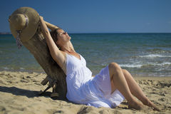 Leaning on driftwood Stock Photography