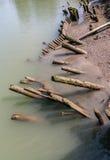 Leaning Log Piles Stock Image