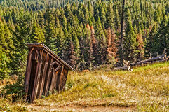 Leaning Outhouse Near Forest Stock Image