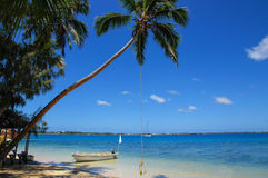 Leaning palm tree with rope swing at Pangaimotu island near Tong. Atapu island in Tonga. Kindom of Tonga is an archipelago comprised of 169 islands Stock Photos