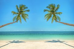 Leaning palm trees over a beach with turquoise sea. In the background Royalty Free Stock Image