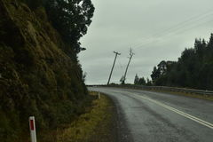 The leaning power pole. A leaning power pole with a tree Royalty Free Stock Photo