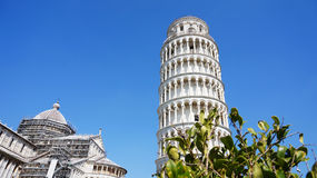The Leaning Tower of Pisa and Cathedral with green plants, Italy Royalty Free Stock Photography