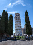 Leaning tower of Pisa. In Italy viewed through the cypress trees Royalty Free Stock Photography