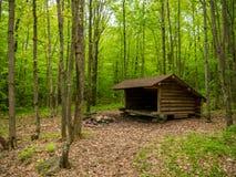 Leanto-Schutz im Adirondacks Stockbilder