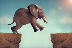 Leap of faith concept elephant jumping across a crevasse. Gap Stock Image