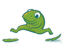 Leaping Frog Stock Photography