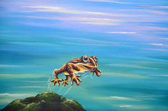 Leaping frog Stock Photo