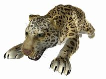 Leaping Jaguar. 3 dimensional model, computer generated image Royalty Free Stock Photography
