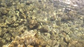 Lear sea water with pebbles on the bottom. Clip stock footage