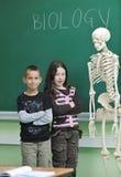 Learn biology in school Stock Photos