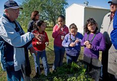 Learn composting. At the Cameron County Master Gardener Arboretum, a group of Children learn about composting from an expert while having a composting snack (a Stock Photos
