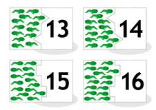 Learn counting puzzle cards, newts and tadpoles, numbers 13-16. Learn counting 2-part puzzle cards to cut out and play, frog newts and tadpoles themed, numbers Stock Photo