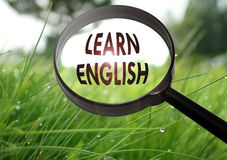 Learn english. Magnifying glass with the word learn english on grass background. Selective focus Royalty Free Stock Image