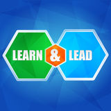 Learn and lead in hexagons, flat design Royalty Free Stock Images