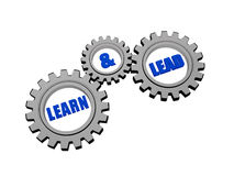 Learn and lead in silver grey gears. Learn and lead - words in 3d silver grey metal gear wheels, business education concept Royalty Free Stock Images