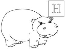 Learn the name of African animals. Inscription Hippopotamus. Educational game vector. ABC coloring. Learn the name of African animals. Inscription Hippopotamus stock illustration
