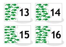 Learn som räknar pusselkort, newts och grodynglar, numrerar 13-16 Arkivfoto