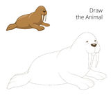 Learn to draw animal walrus vector illustration Royalty Free Stock Photo