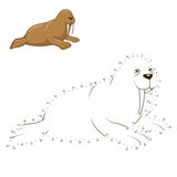 Learn to draw animal walrus vector illustration Royalty Free Stock Image