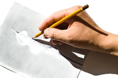 Learn to draw with pencil. Pencil in hand drawing a calla lily flower Royalty Free Stock Image