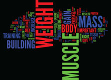 Learn To Gain Weight And Build Muscle Text Background Word Cloud Concept Royalty Free Stock Images