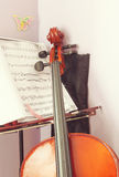 Learning Cello Royalty Free Stock Photo