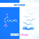 Learning chemistry concept. Chemistry poster with acetylcholine formila. Learning and dreaming inspirational design Stock Photography