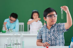 Learning chemistry Royalty Free Stock Image