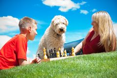 Learning dog Stock Images