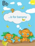 Learning the English alphabet easy and fun. B is for banan, english education · kindergarten · baby, alphabet learning, letter learning, illustrative coloured Royalty Free Stock Photography