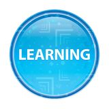 Learning floral blue round button royalty free illustration